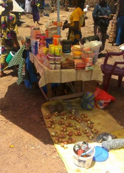 Association RANIME soutient le développement des initiatives économiques en Afrique de l'ouest